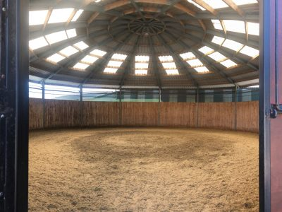 Lunging and breaking shed